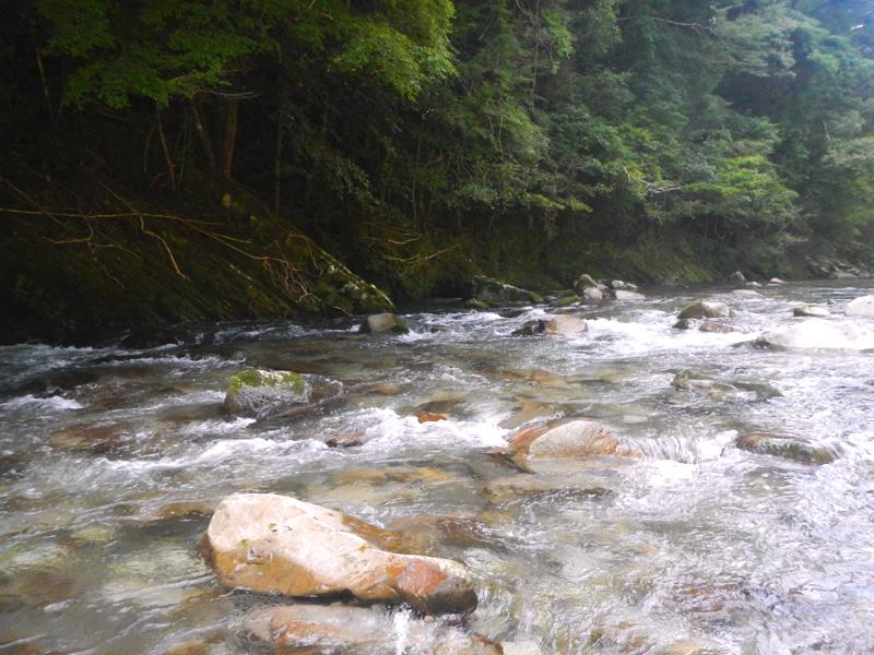 古座川支流