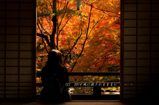 2014年11月 京都・嵯峨野 宝筐院の紅葉1