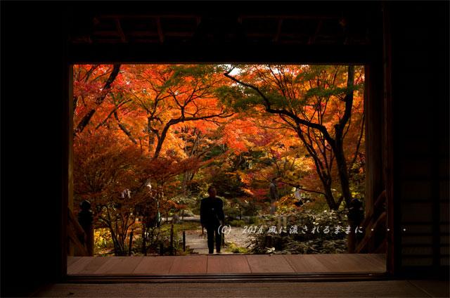 2014年11月 京都・嵯峨野 宝筐院の紅葉2