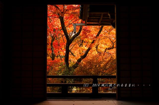 2014年11月 京都・嵯峨野 宝筐院の紅葉3