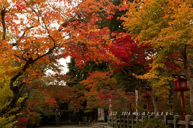 2014年11月 京都・亀岡 鍬山神社の紅葉1