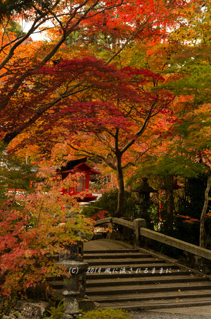 2014年11月 京都・亀岡 鍬山神社の紅葉10