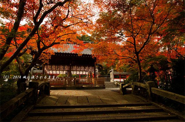 2014年11月 京都・亀岡 鍬山神社の紅葉11
