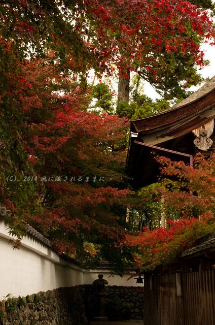 2014年11月 京都・亀岡 鍬山神社の紅葉12