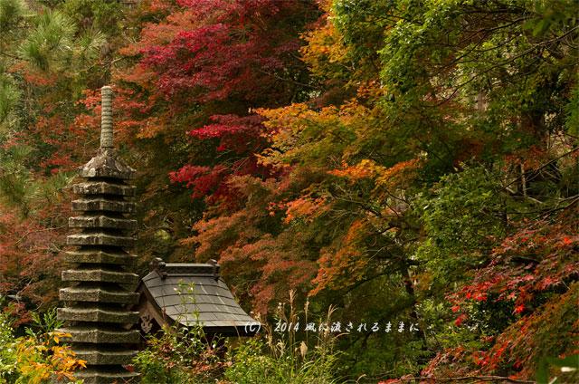 2014年11月 京都・亀岡 鍬山神社の紅葉13