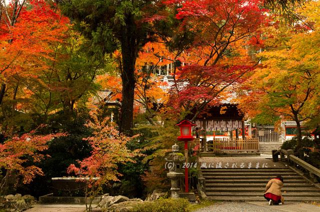 2014年11月 京都・亀岡 鍬山神社の紅葉2