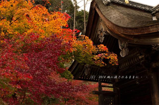 2014年11月 京都・亀岡 鍬山神社の紅葉4