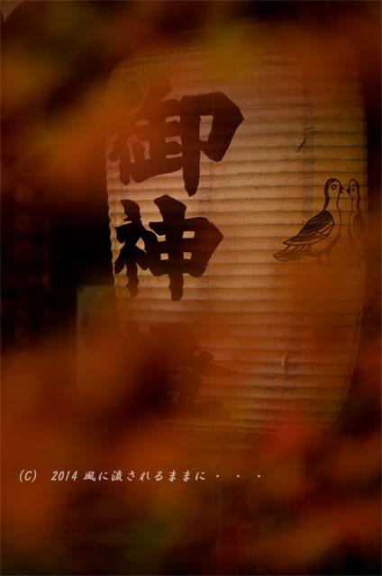2014年11月 京都・亀岡 鍬山神社の紅葉6