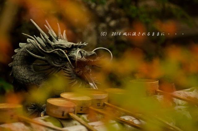 2014年11月 京都・亀岡 鍬山神社の紅葉7