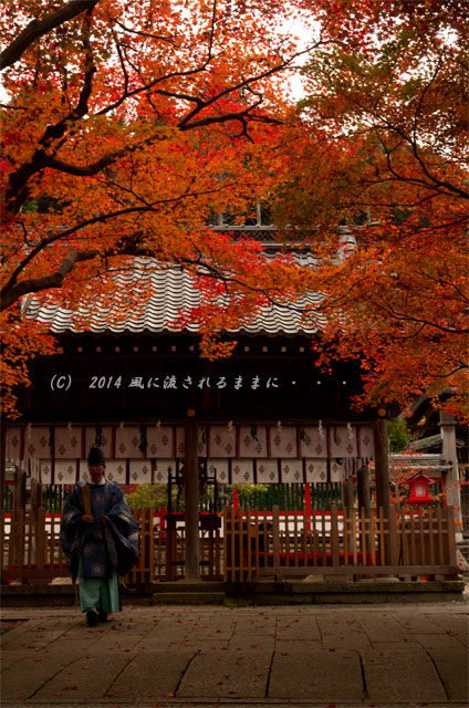 2014年11月 京都・亀岡 鍬山神社の紅葉9