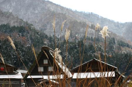 白い雪で美しく表情を変える~世界遺産 白川郷~大自然と田舎らしい風景 ⑤