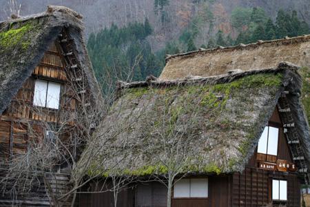 冬のご旅行・レジャーに! 冬のお出かけは世界遺産 白川郷で決まり!! ⑦