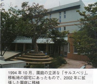 7-エハガキ3樹木