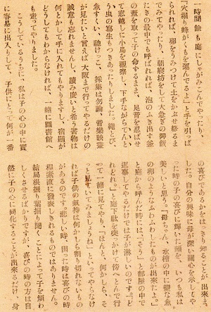 19-文章17