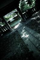 ライトルーム01-0010439