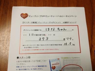 image_20130703212455.jpg