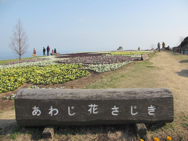 あわじ花さじき6