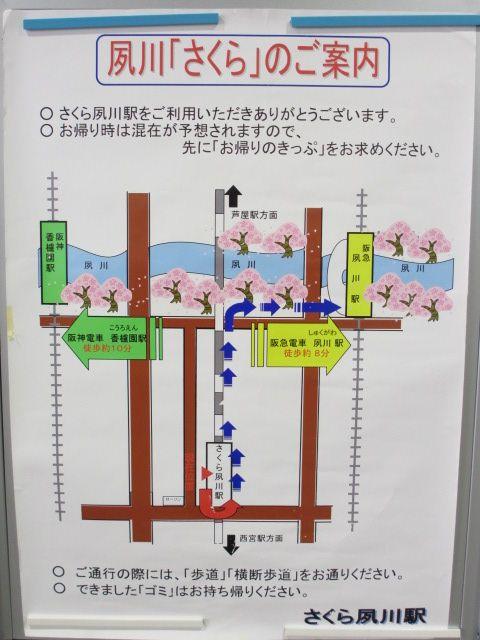 夙川公園2013-2