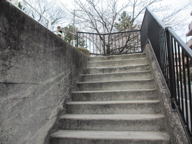 夙川公園2013-3