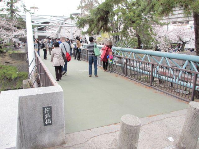 夙川公園2013-7