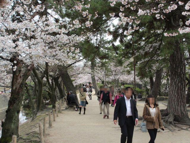 夙川公園2013-22
