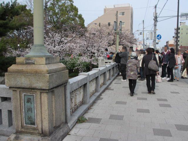 夙川公園2013-31