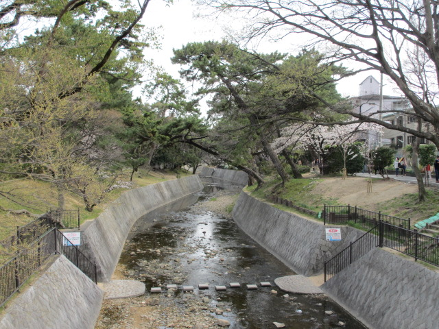 夙川公園2013-34