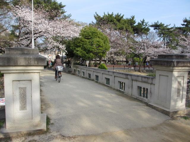 夙川公園2013-40