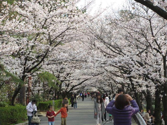 夙川公園2013-42