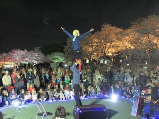 万博記念公園 夜桜2013-13