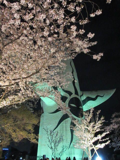 万博記念公園 夜桜2013-15