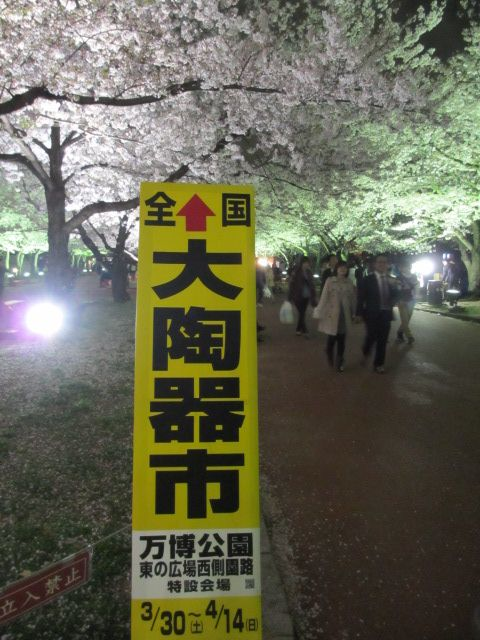 万博記念公園 夜桜2013-19