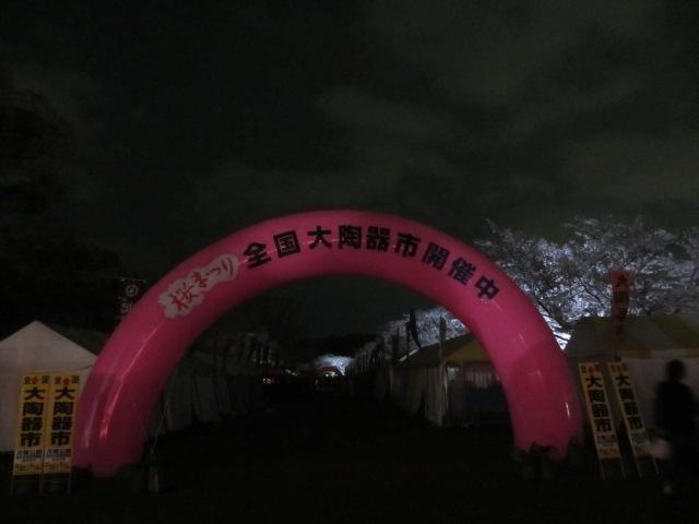 万博記念公園 夜桜2013-22