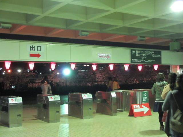 万博記念公園 夜桜2013-28