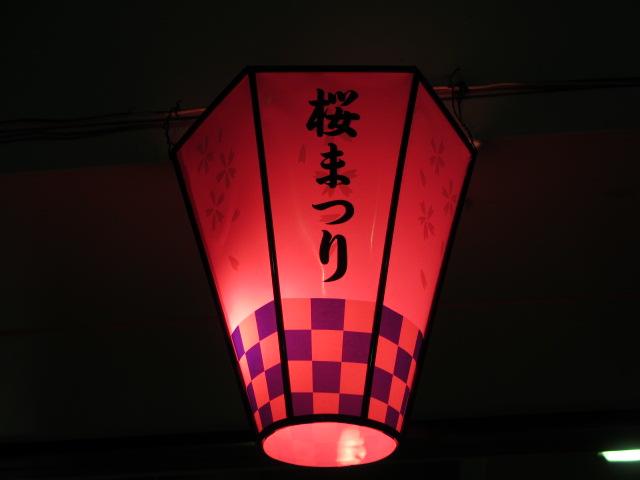 万博記念公園 夜桜2013-4