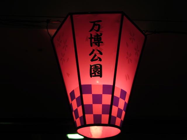 万博記念公園 夜桜2013-29