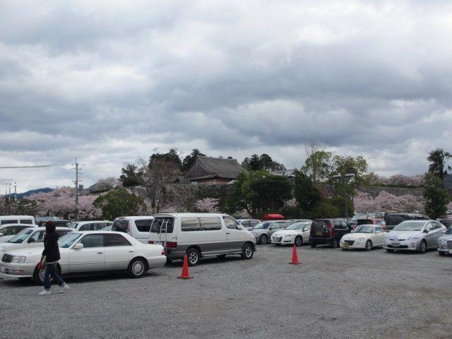 篠山城跡2013-4