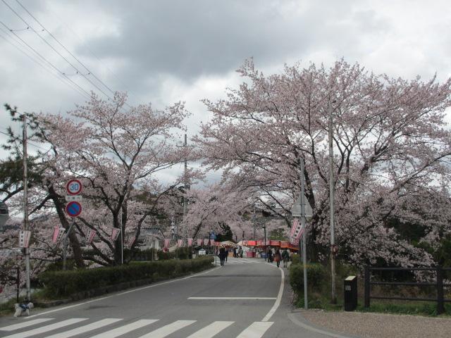 篠山城跡2013-6