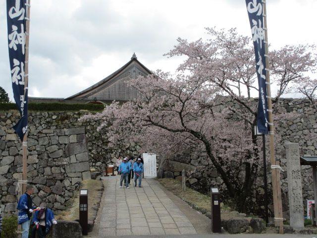 篠山城跡2013-7