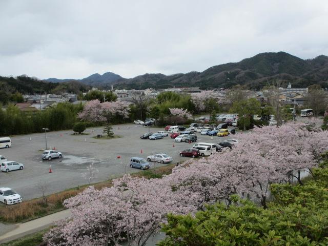 篠山城跡2013-16