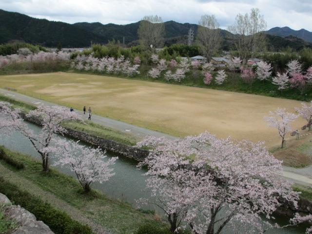 篠山城跡2013-17