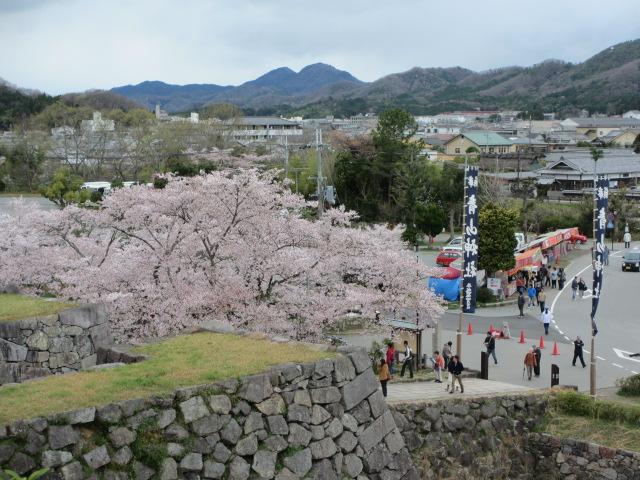篠山城跡2013-29