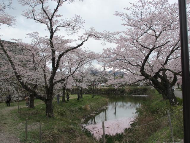 篠山城跡2013-41