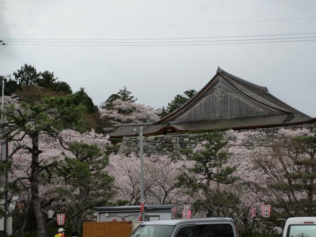 篠山城跡2013-49