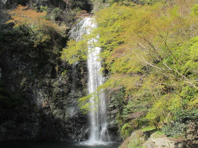 箕面滝2013春-15