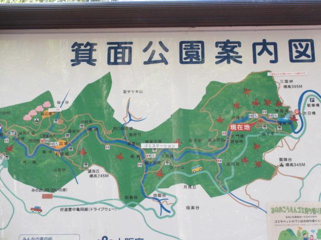 箕面滝2013春-19