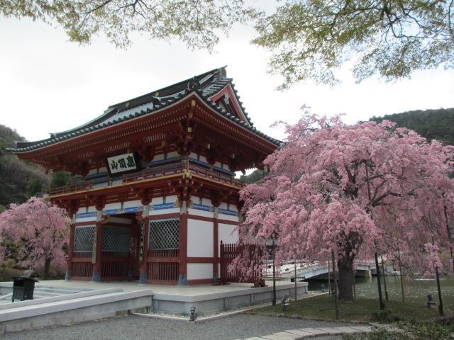 勝尾寺2013-9