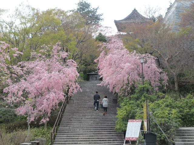 勝尾寺2013-21