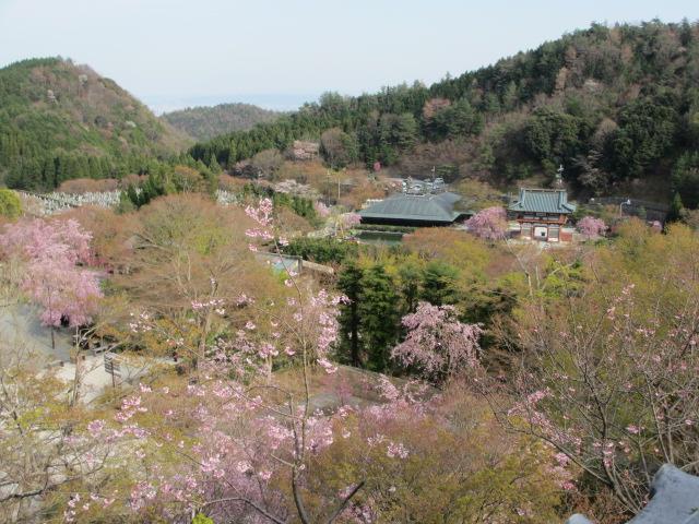 勝尾寺2013-38