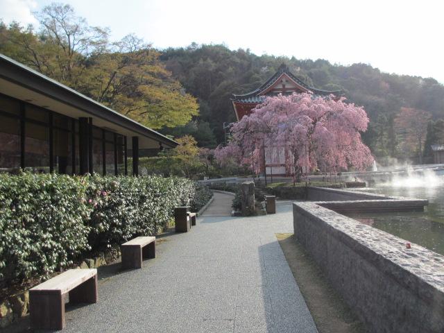 勝尾寺2013-57